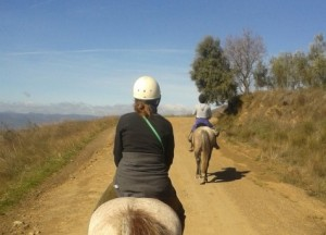 Horse riding near Almond Hill House, Andalucia, Spain
