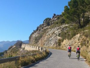 Cyclists on a road in Andalucia