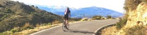 Cyclist on a road in Andalucia